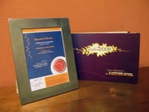 e-festival díj